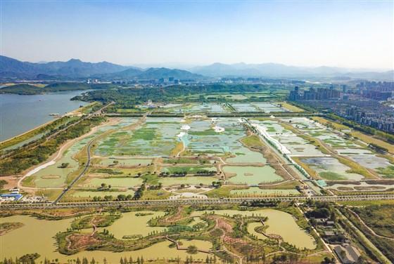平天湖风景区:生态保护与绿色发展并进