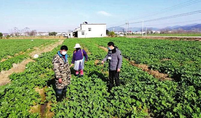 东至县香隅镇将疫情防控与春耕生产有机结合