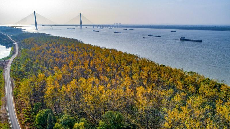 摊开生态文明的美丽画卷 ——池州打造自然秀美的生态绿城推动高质量发展