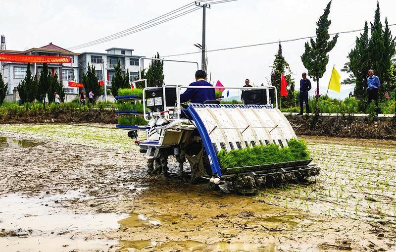 农业机械化助力丰产增收