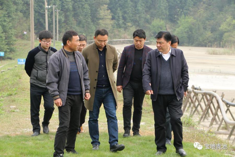 马胜利区长专项督导生态环境整治修复工作