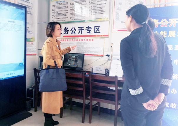 东至县开展政务公开专区建设工作专项督查调研