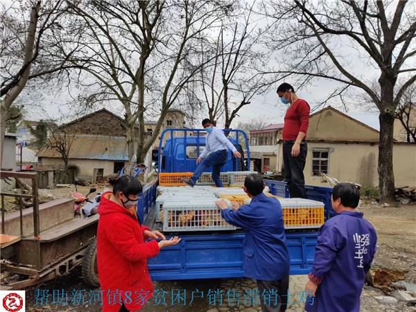 青阳县:农产品滞销 电商来解围
